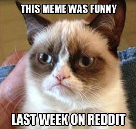 Grumpy-Cat-MEME-ON-REDDIT